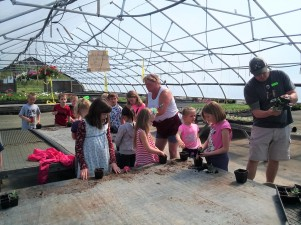 Barley Joe Farm Greenhouses